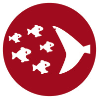 Eventagentur Bremen JAM Eat big fish Challenge